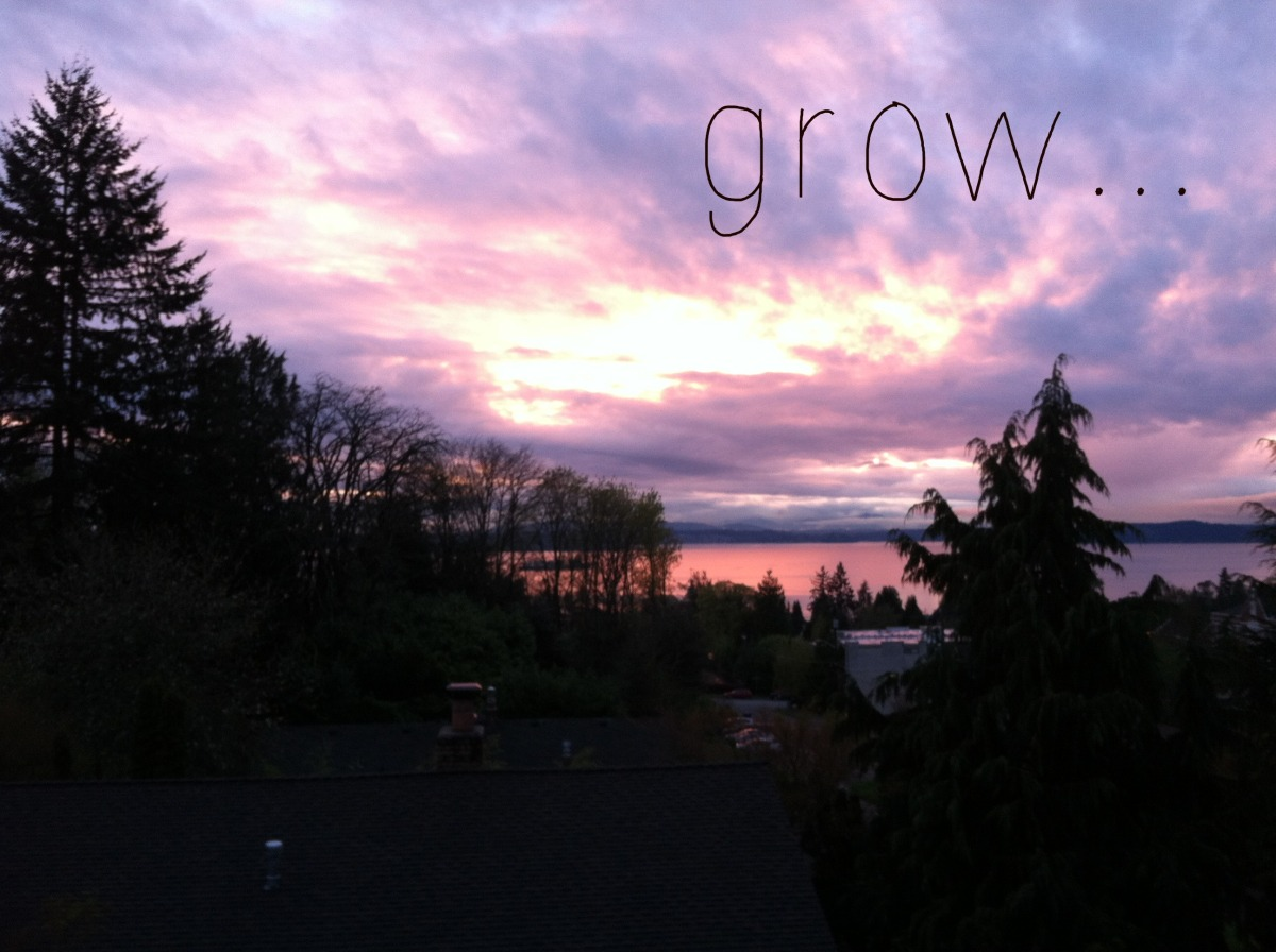 "seattle sunset with word ""grow"""